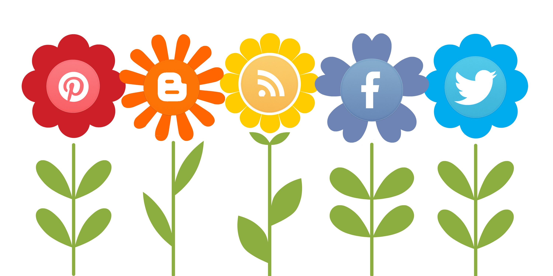 Albuquerque Social Media Marketing