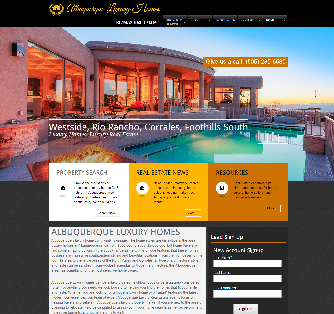 Remax- Luxury Real Estate Website Design