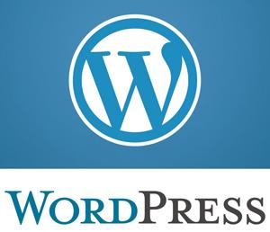 Albuquerque WordPress Website Designer
